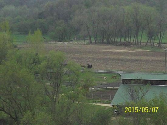 Kickapoo Valley Ranch Guest Cabins: View of the countryside.