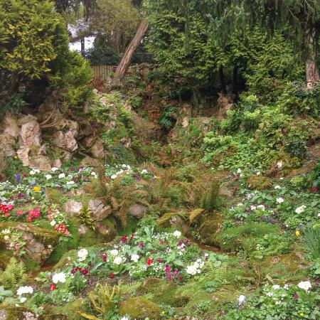 palmarium - Photo de Jardin des Plantes, Nantes - TripAdvisor