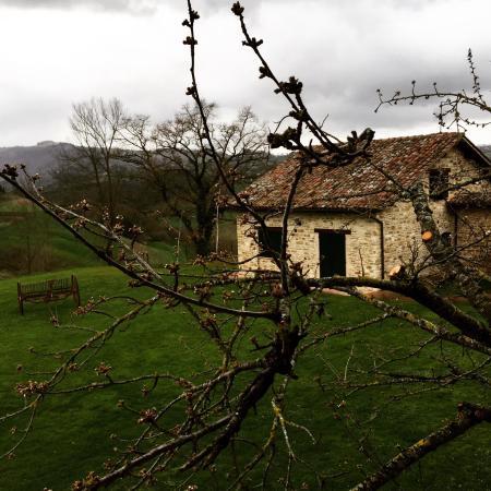 Azienda Agraria Montelujano: photo0.jpg