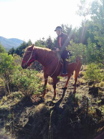 Cabalgatas Haneck: My horse Gringo!