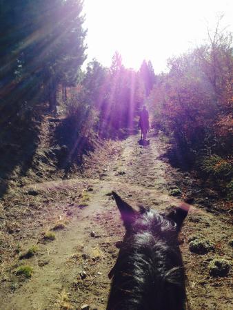 Cabalgatas Haneck: A beautiful trip and ride!