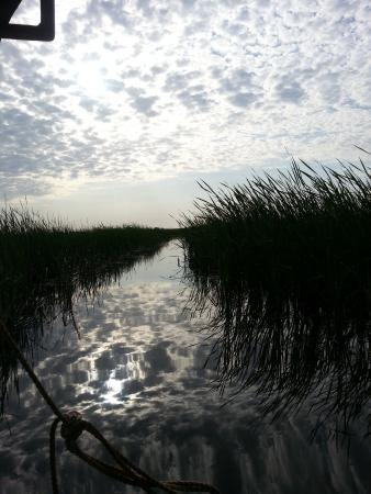 Kaplan, LA: Spectacular view from Barry's crawfish boat