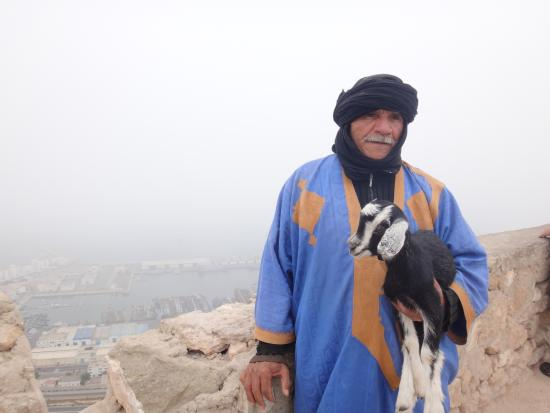 Agadir Kasbah: baby goat