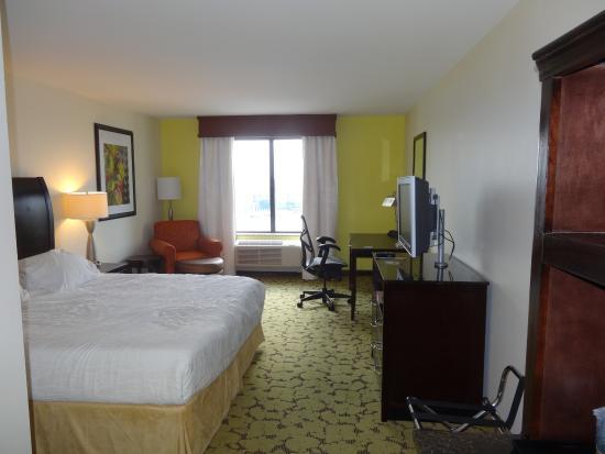 Hilton Garden Inn Dallas Lewisville : Room