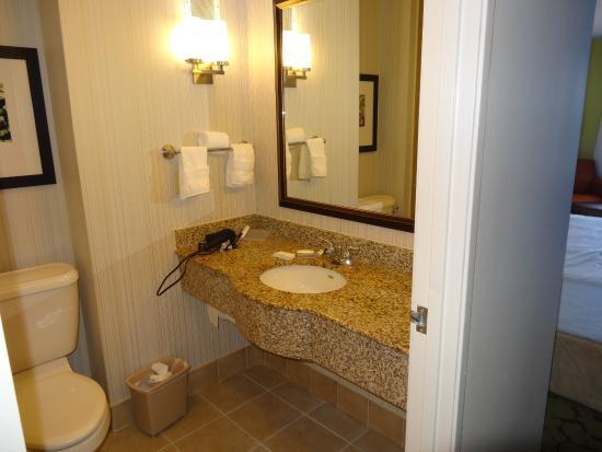 Hilton Garden Inn Dallas Lewisville: Bathroom