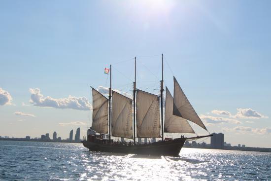 Tallship Cruises : Kajama in the Sunshine