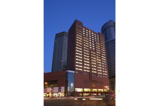 Grand Continent International Hotel: Hotel building