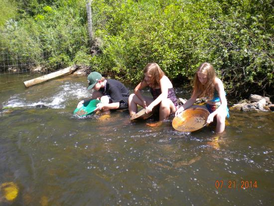 Black Hills Cabins and Motel at Quail's Crossing : panning for gold in Spring Creek