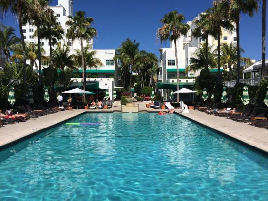 Pool - Kimpton Surfcomber Hotel Photo