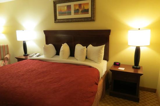 Country Inn & Suites By Carlson, Dothan: comfortable king bed