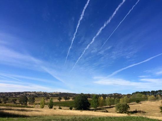 Stockman's Ridge Wines: The views are amazing