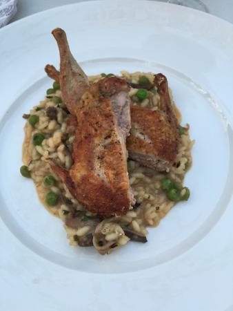 Suzanne Fine Regional Cuisine: photo3.jpg