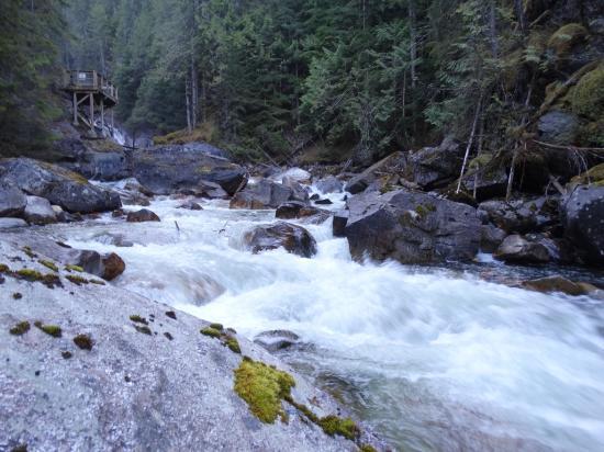 Crazy Creek Resort : uitzicht vanuit de rivier zelf