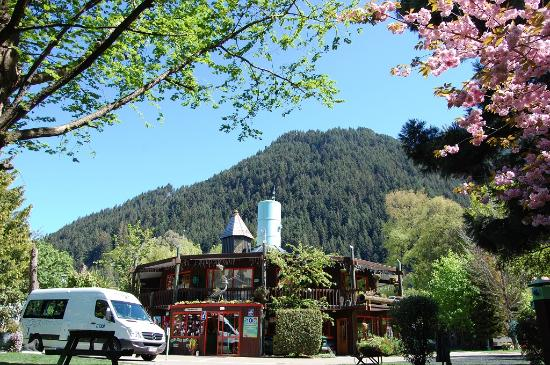 Queenstown Holiday Park & Motel Creeksyde: Queenstown Holiday Park & Motels Creeksyde