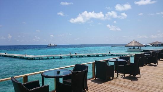Eriyadu Island: Bar