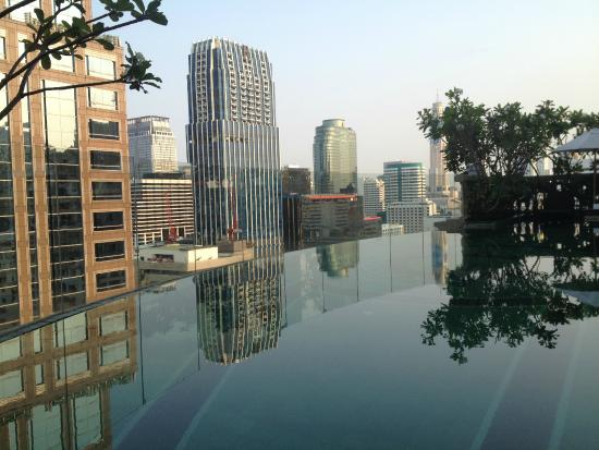 Hotel Muse Bangkok Langsuan Mgallery Collection Early Morning Dip In The Pool