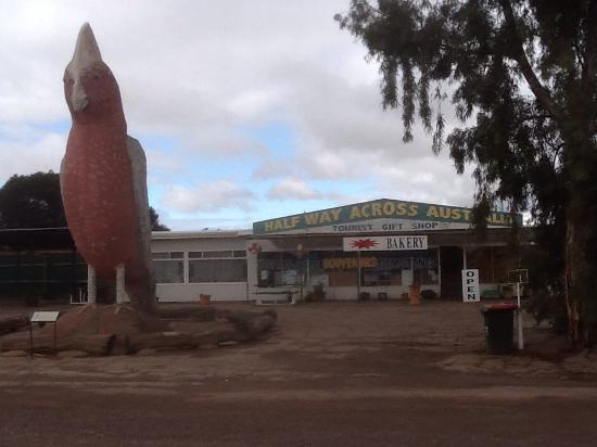 Kimba, Australia: photo0.jpg