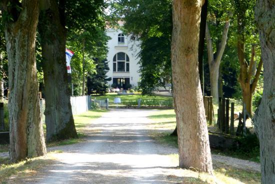 Drosedow, Germany: Schlossallee mit direkter Auffahrt