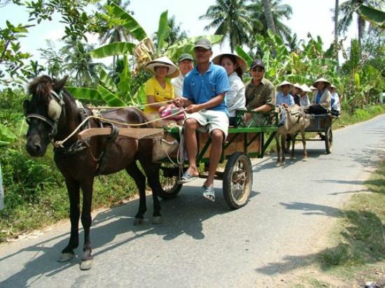 Ben Tre Province, เวียดนาม: xe ngựa đường làng