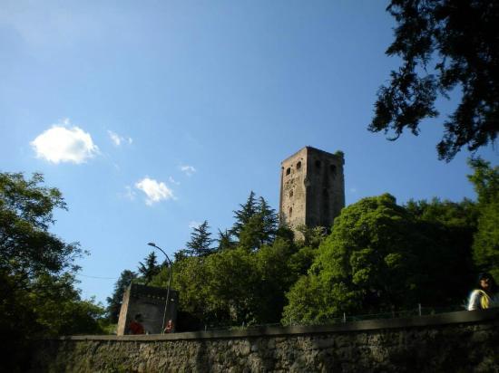 Susegana, إيطاليا: veduta castello