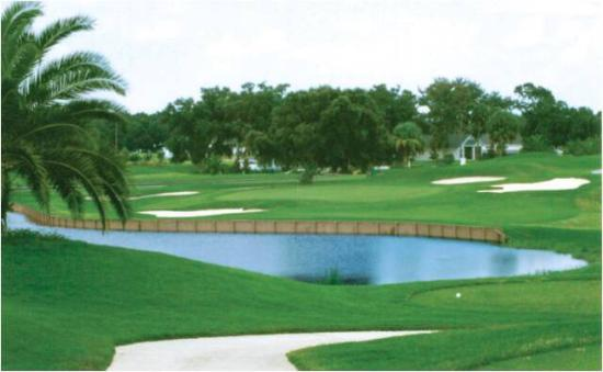 ‪Ridgewood Lakes Golf and Country Club‬