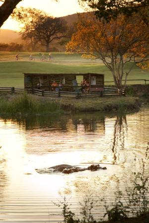 Sabi River Sun Resort: Hippo Hide