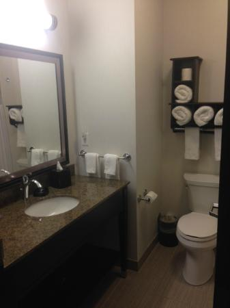 Hampton Inn & Suites by Hilton Regina East Gate: Large bathroom