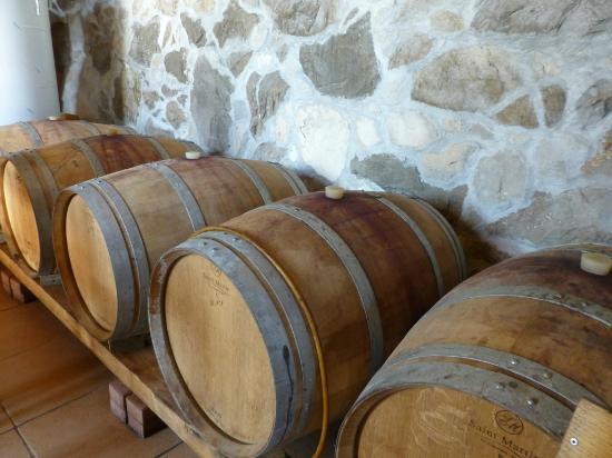 Wine Tours Croatia