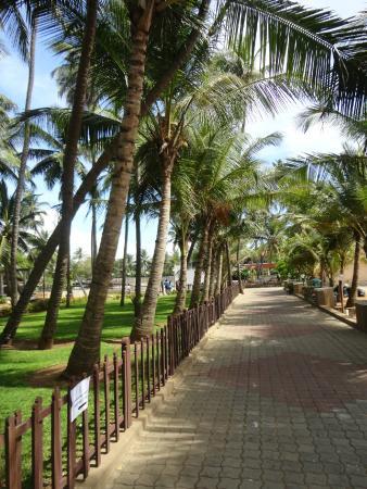 MGM Beach Resorts: Walking Paths