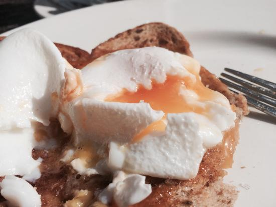 Village Cafe: Yummy poached egg on brown toast