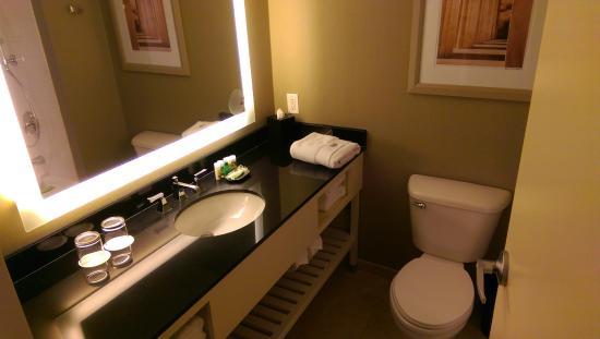 The Westin Arlington Gateway: Bathroom
