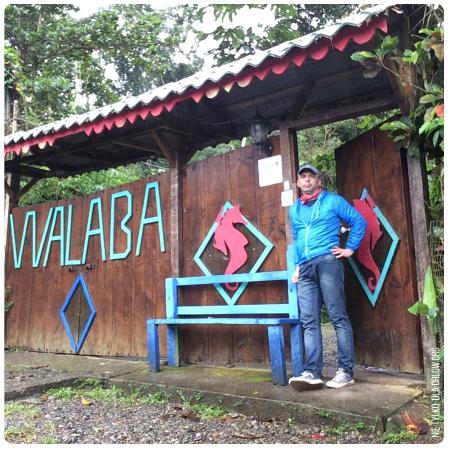 Walaba Hostel & Beach Houses: Walaba1