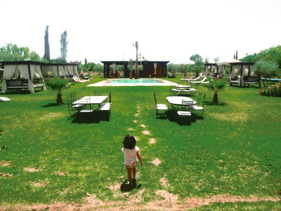 Al Riad Inou: Pool View