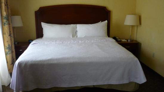 Homewood Suites Daytona Beach Speedway - Airport: Bed (very comfortable)