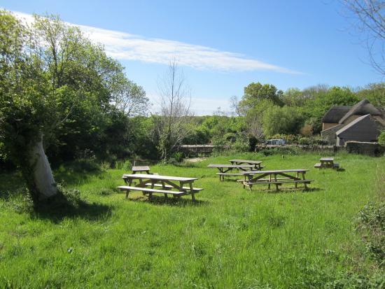 Weymouth (เมืองเวย์มุธ), UK: The picnic area
