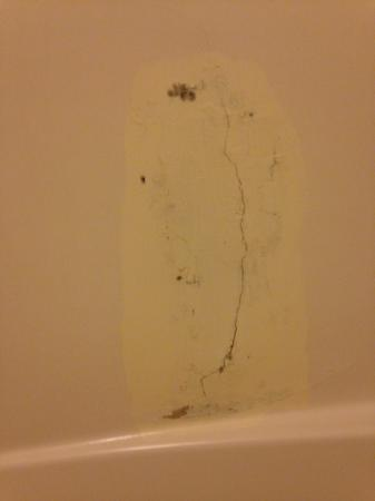 Prospect, OR: damaged/marred shower wall