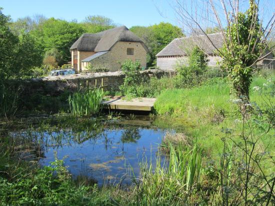 Lorton Meadows Conservation Centre & Nature Reserve