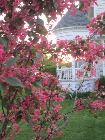 Anna V's Bed and Breakfast : Spring at Anna V's