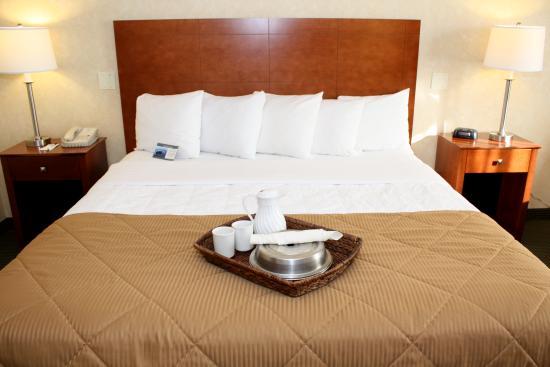 clarion hotel conference center toms river save up to. Black Bedroom Furniture Sets. Home Design Ideas