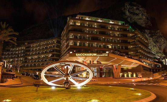 Savoy Saccharum