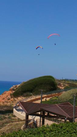 7 Winds Tandem Paragliding: Параглайдинг