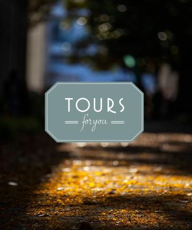 Tours for You - Day Tours : Tours For You - A never ending Portugal to discover