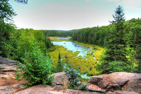 The best view over Beaver Pond Trail