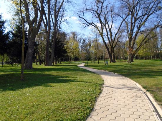 Springer Schlössl Hotel: The park
