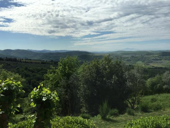 La Locanda: The amazing view