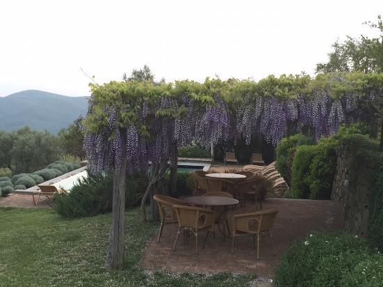 La Locanda: Terrace close to the pool