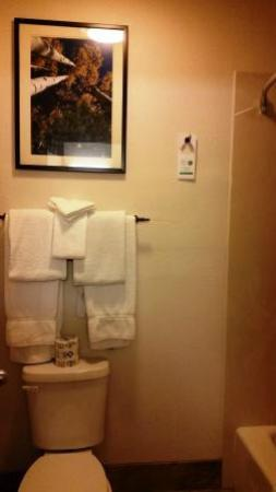 Comfort Inn Flagstaff: Bathroom