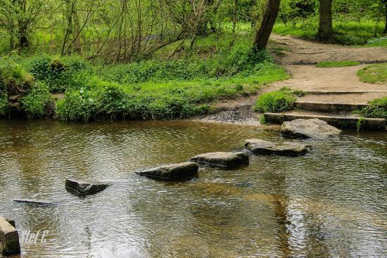 Cuerden Valley Park
