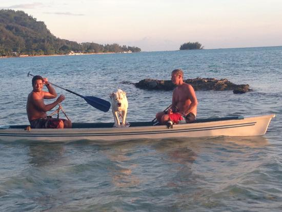 Villa Corallina Moorea : Hanging out with Maui