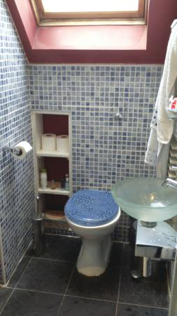 Grange Guest House: Bathroom